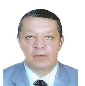 الدكتور محمد صلاح عبدالعزيز سلطان